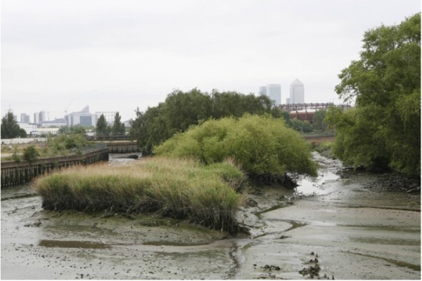 Lara Almarcegui, Guide to the Wastelands of the Lea Valley. 12 Empty Spaces Await the London Olympics, 2009